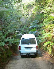 Support vehicle of Green Island  Tours in  rainforest of the Westcoast of Tasasmania