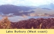 Lake Burbury at the West Coast of Tasmania.