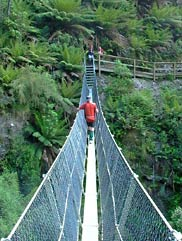 Suspensions bridge at the Montezuma Falls, West Coast of Tasmania.