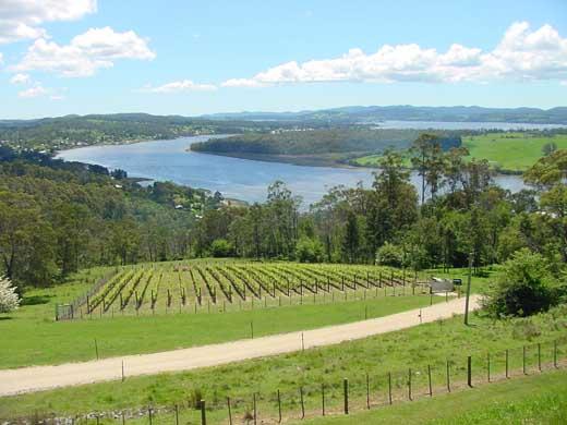 Tamar Valley Australia  city photos : click the